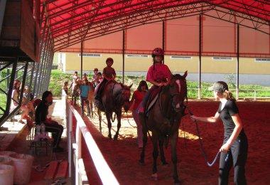 Ježdění na koních na jízdárně
