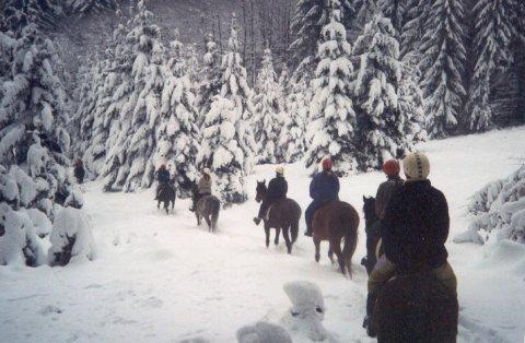 Zimní romantika v Chřibech